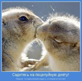 Поцелуй - это единственная сладость, от которой не толстеют