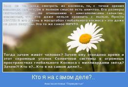 """Анастасия Новых """"Перекрестье"""""""