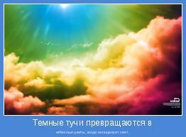 небесные цветы, когда их поцелует свет.