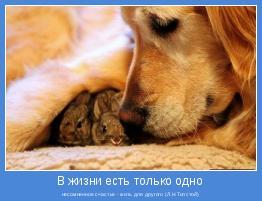 несомненное счастье - жить для другого (Л.Н.Толстой)