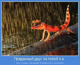 огонь, и в воду, и под дождем. И награда за все -твоя улыбка