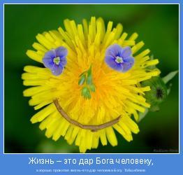 а хорошо прожитая жизнь–это дар человека Богу. Тойшибеков.