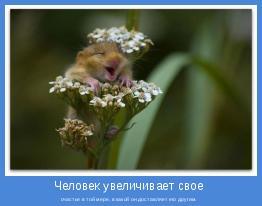 счастье в той мере, в какой он доставляет его другим.