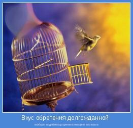 свободы подобен ощущению сияющего восторога