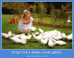 словно в небо белых голубей!
