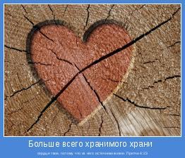 сердце твое, потому что из него источники жизни. Притчи 4:23