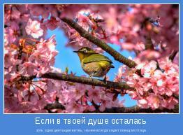 хоть одна цветущая ветвь, на нее всегда сядет поющая птица