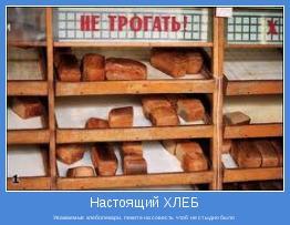 Уважаемые хлебопекари, пеките на совесть.Чтоб не стыдно было