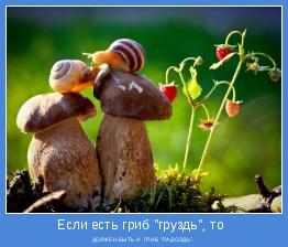 """ДОЛЖЕН БЫТЬ И  ГРИБ """"РАДОЗДЬ""""."""
