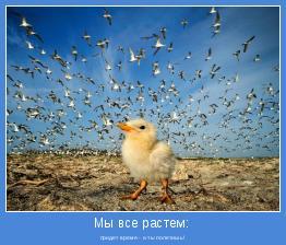 придет время - и ты полетишь!