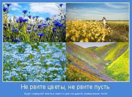 будет нарядной земля,а вместо цветов дарите ромашковые поля!