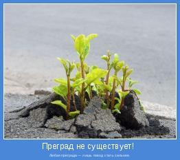 Любая преграда — лишь повод стать сильнее.