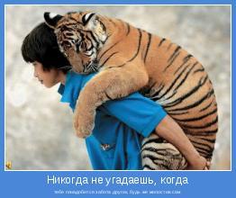 тебе понадобится забота других, будь же милостив сам