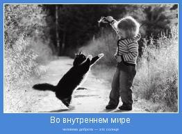 человека доброта — это солнце