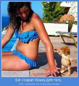 чтобы у человека был Тигр, которого можно погладить