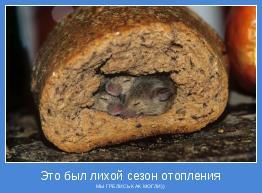 МЫ ГРЕЛИСЬ КАК МОГЛИ))