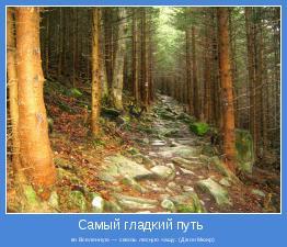 во Вселенную — сквозь лесную чащу. (Джон Мюир)