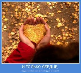 Сердце не обманет, Золотое Сердце не солжёт!