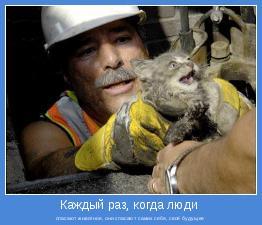 спасают животное, они спасают самих себя, своё будущее