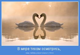 лишь любовь уносит в высь! ( Гете )