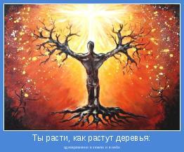 одновременно в землю и в небо