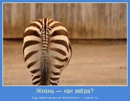 Будь хитрее! Дошел до белой полосы — и вдоль! )))