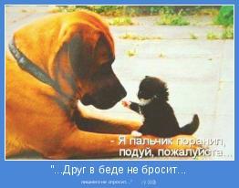 """лишнего не спросит...""""      ;-) )))))"""