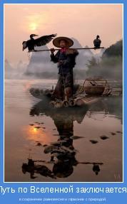 в сохранении равновесия и гармонии с природой.