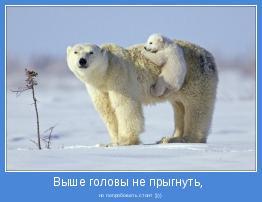 но попробовать стоит ))))