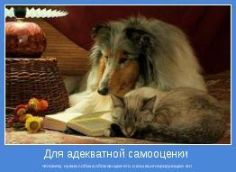 человеку нужна собака,обожающая его,и кошка,игнорирующая его