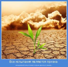 ком духовной силы,готовности Души двигаться вперёд...