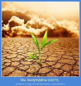 развиваться, потому что стоит нам моргнуть, и мир изменяется