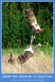 восторг от полёта, если душа у тебя крылатая!
