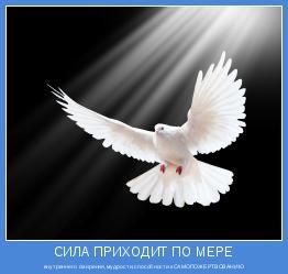 внутреннего смирения,мудрости,способности кСАМОПОЖЕРТВОВАНИЮ