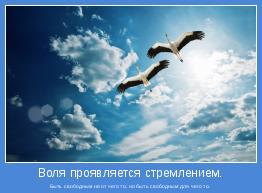 Быть свободным не от чего то, но быть свободным для чего то.