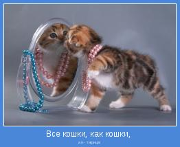 а я - тигрица!