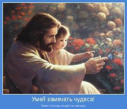Помни: Господь создаёт их повсюду!
