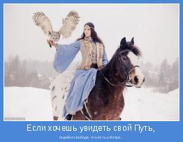 отдайся свободе, что есть у Ветра...