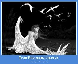 не распускайте перья :)