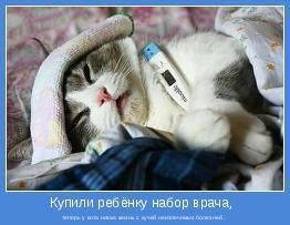 теперь у кота новая жизнь с кучей неизлечимых болезней...