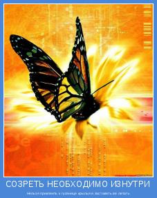 Нельзя приклеить к гусенице крылья и заставить ее летать
