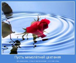 вся наша жизнь...След от кругов на воде – это тоже след.