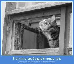 для кого уже не имеет значения - свободен он или нет!