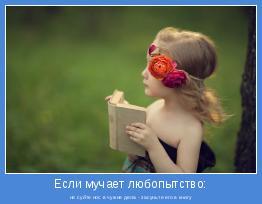 не суйте нос в чужие дела - засуньте его в книгу