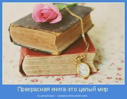 но целый мир — прекрасней всякой книги.