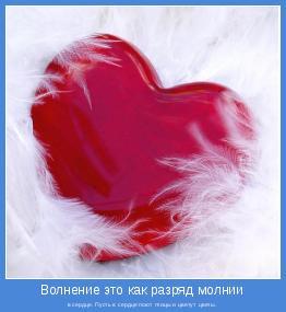 в сердце. Пусть в сердце поют птицы и цветут цветы.