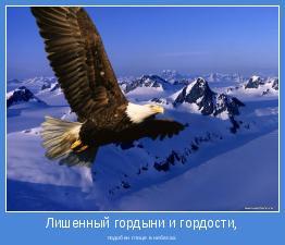 подобен птице в небесах.