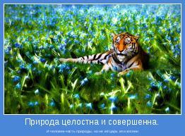 И человек-часть природы, но не её царь или хозяин