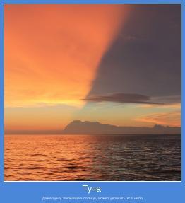 Даже туча, закрывшая солнце, может украсить всё небо