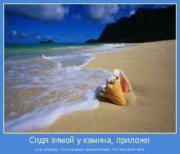 к уху ракушку. Ты услышишь дыхание моря. Это послание лета